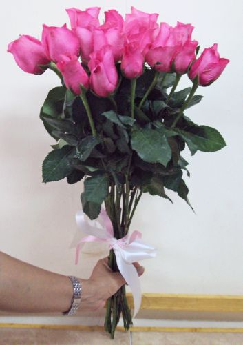 Fresh Pink Chinese Roses - Tied Stems Only