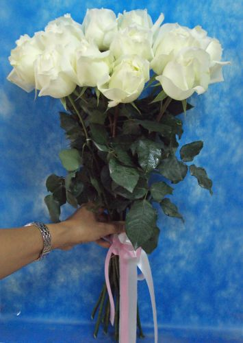 Fresh White Chinese Roses - Tied Stems Only